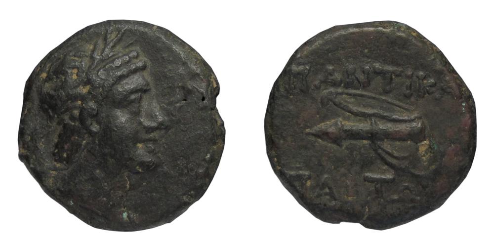 фото монет пантикапей золотые называются простейшие открытые